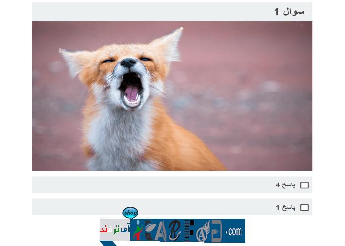itarfand-shop-165-min افزونه WP Quiz Pro برای ایجاد آزمون و نظرسنجی در وردپرس